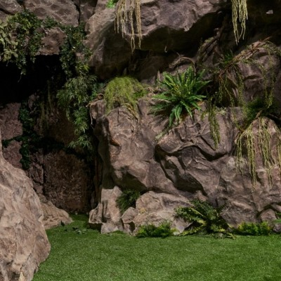 Фотостудия скалы в тропическом лесу и белый домик